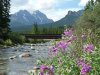 Banff4
